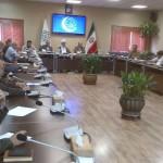جلسه هم اندیشی شورای مشورتی شهردار تهران در امور توان یابان و شهر دسترس پذیر