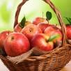 خوراکی هایی که اخلاقتان را خوب میکنند